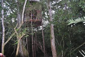 Chimps' Nest Lodge Room Rates - Kibale Forest National Park accommodations