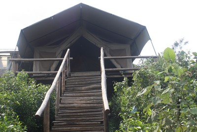 budget to luxury lodging and accommodations – Bwindi Gorilla Tracking - Gorilla Resort