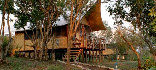 Bush Lodge - Queen Elizabeth National Park - Uganda