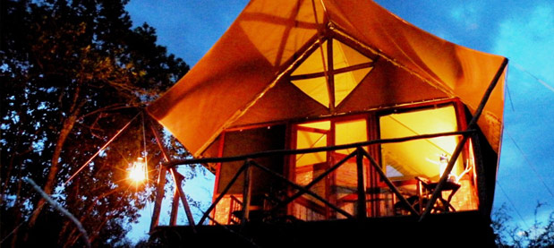 Bush Lodge - Queen Elizabeth National Park accommodations