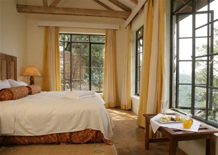 budget to luxury lodging and accommodations – Bwindi Gorilla Tracking - Clouds Mountain Gorilla lodge