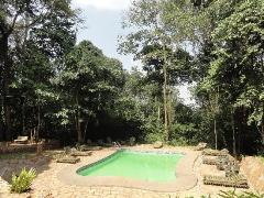 the_rain_forest_lodge_pool
