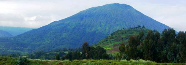 Information, Travel Tips, Advice and Things to do and See in Volcanoes National Park – Rwanda