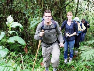 Gorilla Tracking (Trekking) Experience and Guidelines