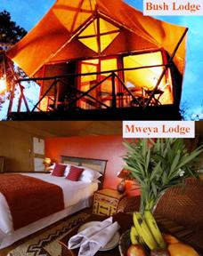 short safari tour in the heart of Africa - Mweya and Bush lodge