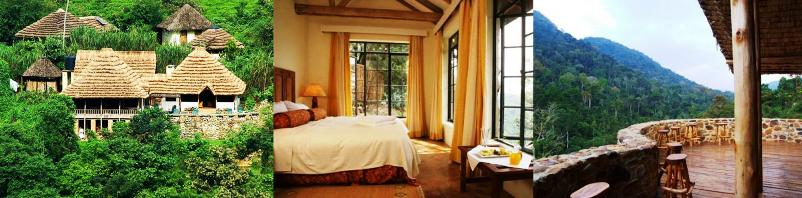 Bwindi Impenetrable Forest Park Lodging and Accommodations