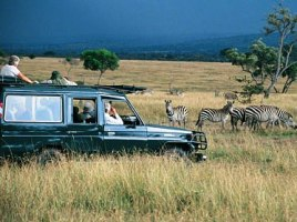 The Great Uganda Loop Safari: 16 Days into Uganda's Best National Parks - lake mburo game drive