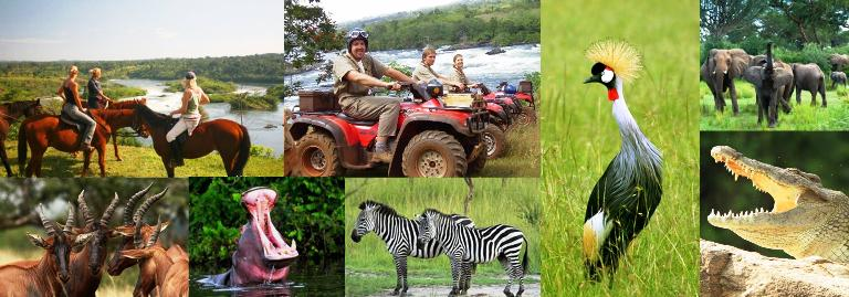 Ultimate 2 day Luxury Lake Mburo Safari in Uganda