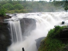 Top of Murchison Falls visit - 7 day uganda safari