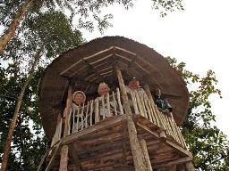 Stay in a Tree House - Kibale chimpanzee tracking