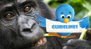 Bwindi Impenetrable Forest Park Lodging and Accommodations - Uganda mountain gorilla tracking guidline