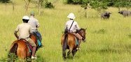 1 day Wildlife Safari to Lake Mburo National Park - Lake mburo ultimate luxury 2 day safari